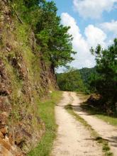 Road traveled - DIET
