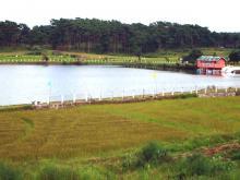 Thadlaskein Lake-DIET 2007